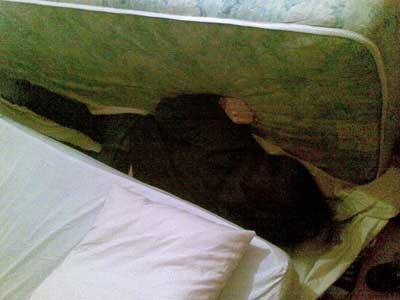 dormire sul divano4